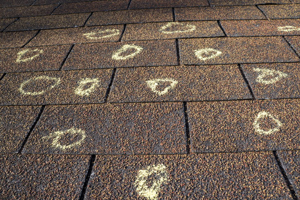 Hail damage on a shingle roof